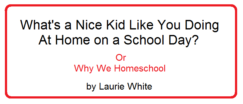 homesch-why we homeschool
